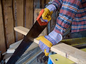 Woodworking Tools - Hand Saw